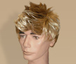 Billy Idol Wig
